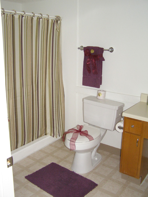 Bathroom at Listing #237208