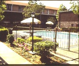 Pool at Listing #139683