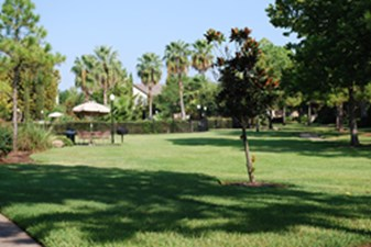 Picnic Area at Listing #138689