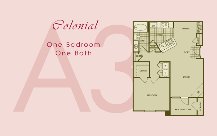 800 sq. ft. COLONIAL floor plan
