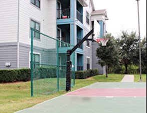 Basketball at Listing #144995