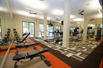Fitness at Listing #228046