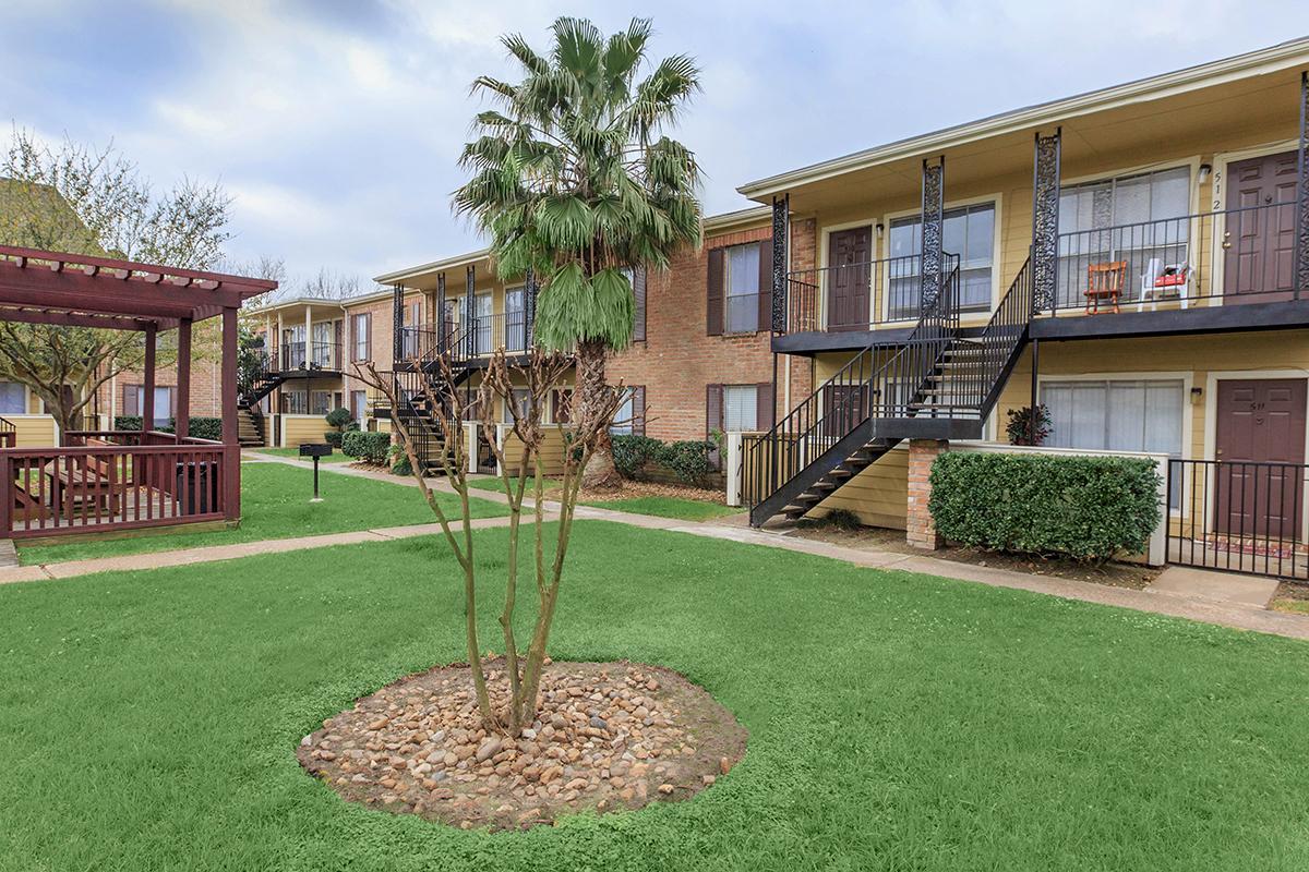 Jacinto Palms Apartments Houston TX