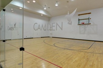 Basketball Court at Listing #137685