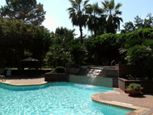 Pool at Listing #139613