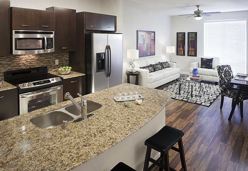Living/Kitchen at Listing #147040