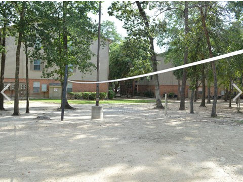 Volleyball at Listing #138556