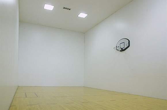 Basketball at Listing #136500