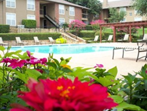 Pool at Listing #136833