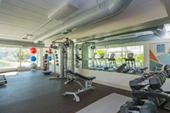Fitness at Listing #139114
