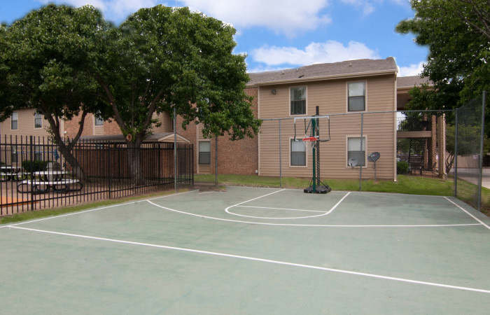 Basketball at Listing #135650