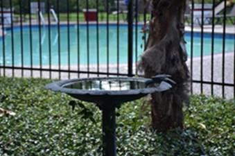 Pool at Listing #139437