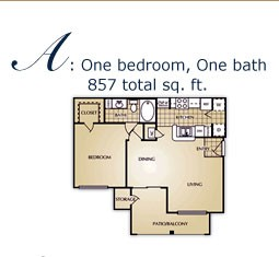 717 sq. ft. A floor plan