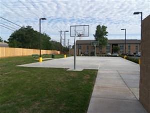 Basketball at Listing #236655