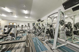 Fitness at Listing #280598