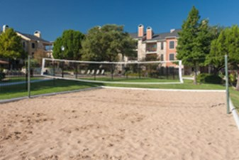 Volleyball at Listing #140567