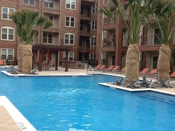 Pool at Listing #236344