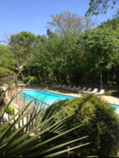 Pool at Listing #137398