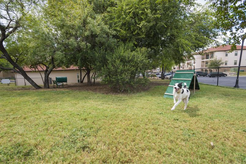 Dog Park at Listing #144533