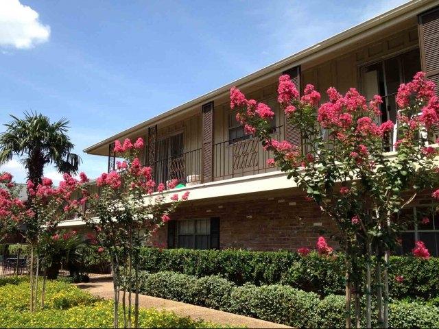 Meyer Oaks Apartments Houston, TX