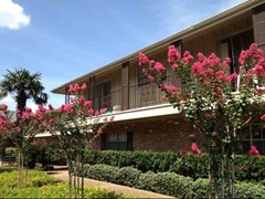 Meyer Oaks Apartments Houston TX