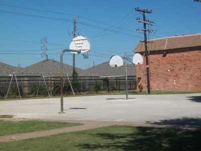 Basketball at Listing #235443