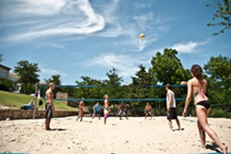 Volleyball at Listing #332081