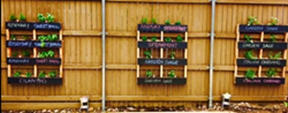 Community Garden at Listing #292933