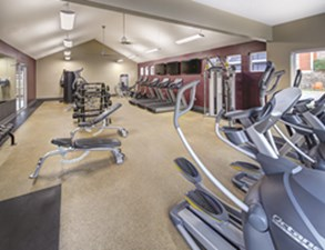 Fitness at Listing #217219