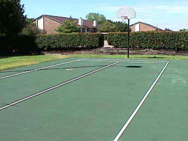 Basketball at Listing #136019