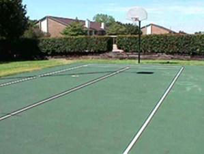 Basketball at Listing #136019