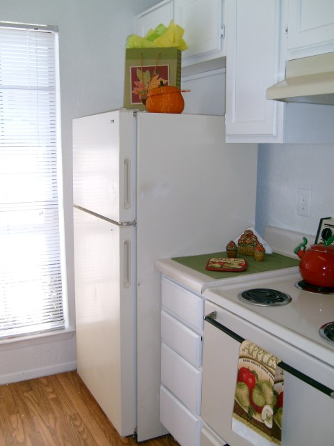 Kitchen at Listing #151725
