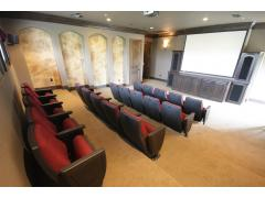 Theater at Listing #141434