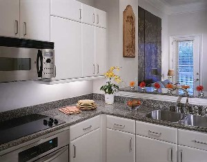 Kitchen at Listing #144887