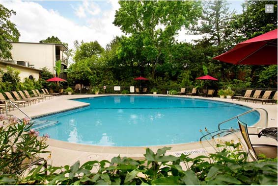 Pool at Listing #138788