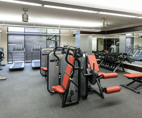 Fitness at Listing #248094