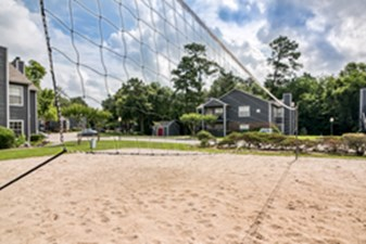 Volleyball at Listing #138665