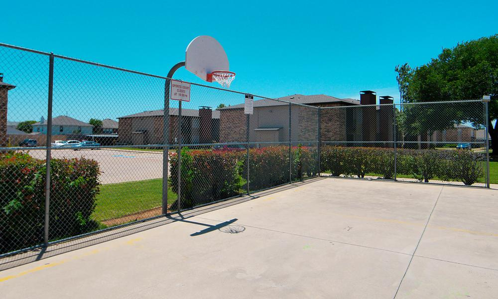 Basketball at Listing #137195