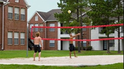 Volleyball at Listing #214787