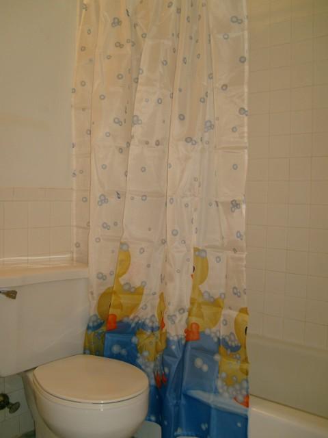 Bathroom at Listing #137230