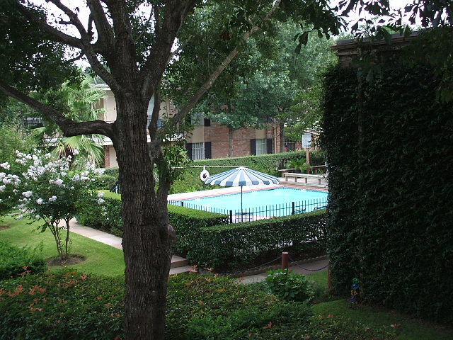 Pool at Listing #139910