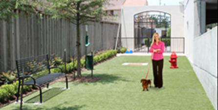 Dog Park at Listing #144418