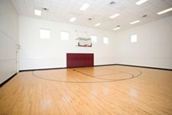 Basketball at Listing #137621