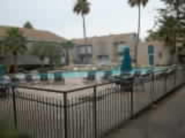Coral Gables pool at Listing #139861