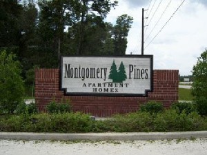 Montgomery Pines Apartments Porter TX