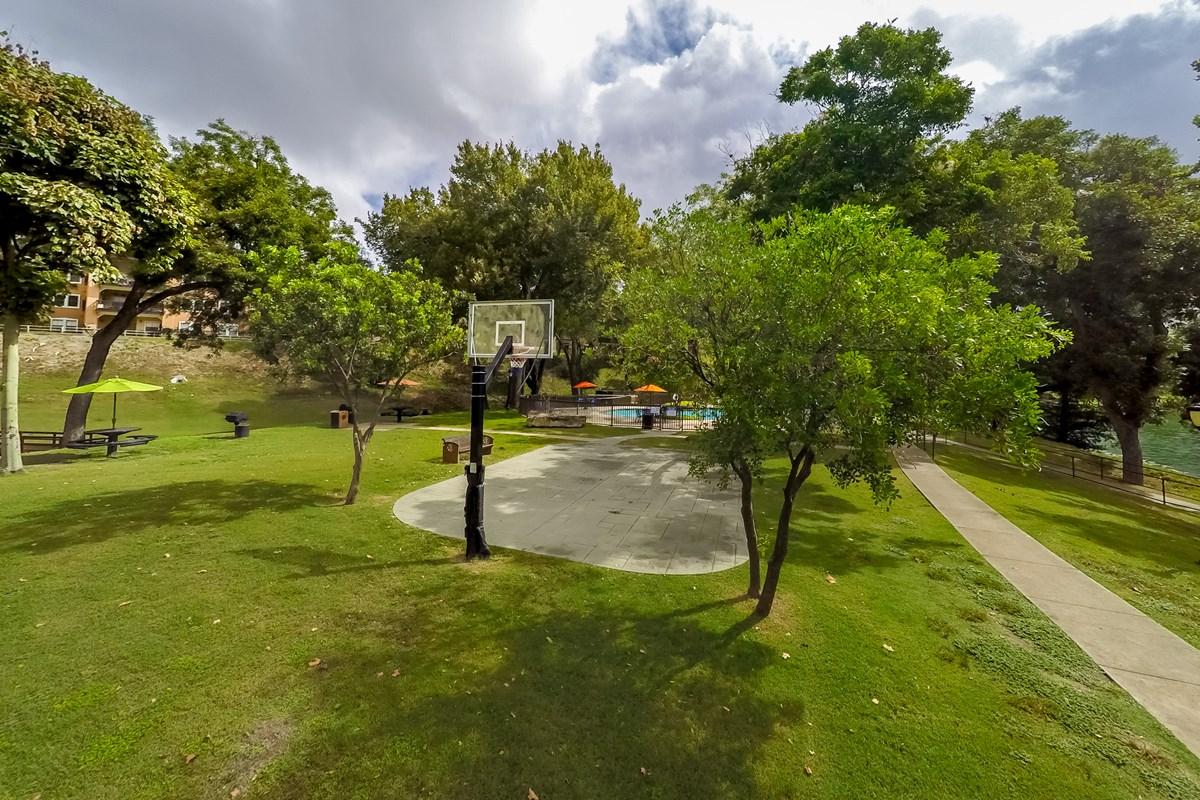 Basketball at Listing #141376