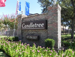 Candletree at Listing #137101