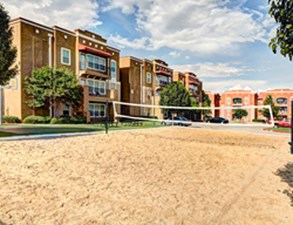 Volleyball at Listing #147767
