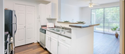 Living/Kitchen at Listing #140155