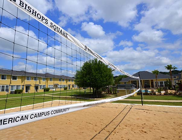 Volleyball at Listing #140729